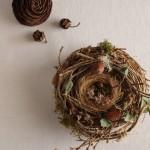 鳥の巣リース