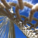 ハンモックから見上げる青空は格別です