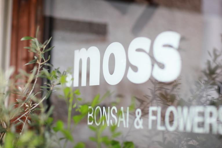 moss_0246